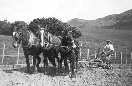 Len Stebbings ploughing the Accommodation Road