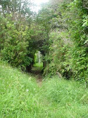 Glenside track