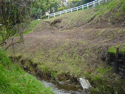 Streamside cleared for planting 2008