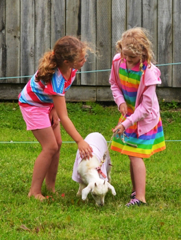 Girls and goat